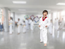 Taekwon-Do attention stance Stock Images