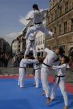 Taekwon do peace korpsen royalty-vrije stock afbeeldingen