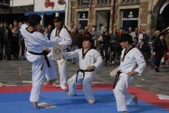 Taekwon do peace korpsen stock afbeeldingen