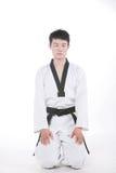 Taekwondo royalty-vrije stock foto's