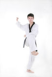 Taekwondo Royalty Free Stock Photo