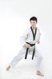 Taekwondo fotografia stock libera da diritti
