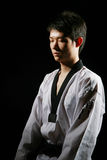 Taekwondo Royalty Free Stock Photos