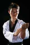 Taekwondo Royalty Free Stock Image