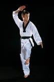 Taekwondo Stock Photography
