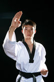 Taekwondo Stock Photography