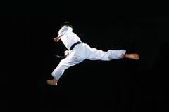 taekwondo Стоковое Изображение