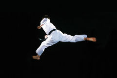Taekwondo Imagem de Stock