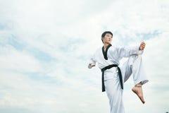 Taekwondo imagem de stock royalty free