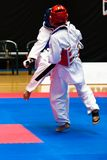 taekwondo Στοκ Εικόνα