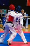taekwondo Obraz Royalty Free