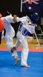 Taekwondo Royalty Free Stock Photos