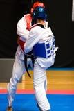 taekwondo Royaltyfri Bild