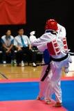 Taekwondo fotografering för bildbyråer