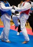 Taekwondo Immagine Stock