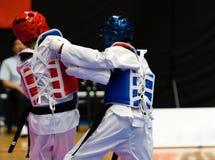 taekwondo Arkivfoto