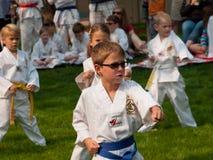 Taekwondo Arkivbilder