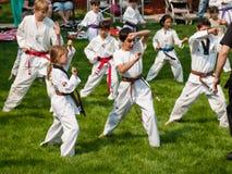 Taekwondo Royaltyfri Foto