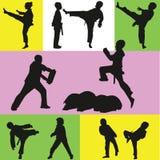 Taekwondo Lizenzfreies Stockfoto