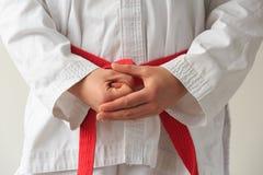 Taekwondo Stock Afbeelding