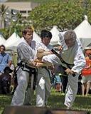 Taekwondo Royaltyfria Bilder