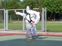 Taekwondo Stock Photo