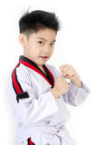 Taekwondo action by a asian cute boy. Taekwondo action by Little asian boy smiles, isolate on white background stock images
