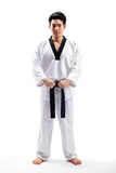 Taekwondo action Stock Photos