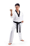 Taekwondo action Royalty Free Stock Image