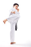 Taekwondo action Stock Photography