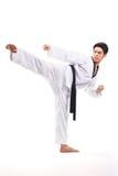 Taekwondo action Royalty Free Stock Image