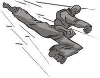 Taekwondo back kick. For icon of martial arts club Royalty Free Stock Photography