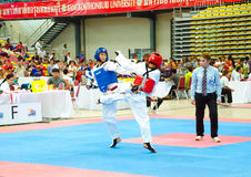 Taekwondo Royalty Free Stock Images
