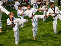 TaeKwonDo Royalty Free Stock Photography