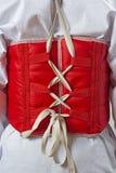 Taekwondo body protector vest Royalty Free Stock Photo