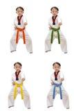 Taekwondo boy Stock Photos