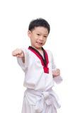 Taekwondo boy  on white background Stock Image
