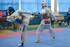 Taekwondo competition Royalty Free Stock Photo