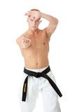 Taekwondo fighter Stock Photo