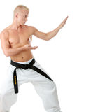 Taekwondo fighter Stock Photography