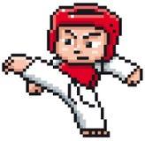 Taekwondo gracz Zdjęcie Royalty Free