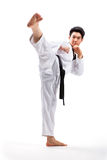 Taekwondo handling royaltyfri bild