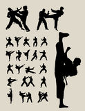 Taekwondo i karate sylwetki Obrazy Royalty Free