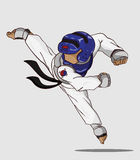 Taekwondo kampsport Royaltyfria Bilder