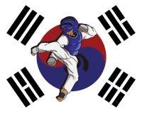 Taekwondo kampsport Royaltyfri Foto