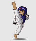 Taekwondo krijgsart. Stock Afbeelding