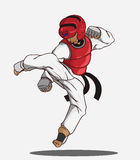Taekwondo krijgsart. Royalty-vrije Stock Foto