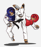 Taekwondo martial art Royalty Free Stock Photos