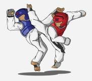 Taekwondo martial art vector illustration