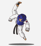 Taekwondo martial art Royalty Free Stock Images